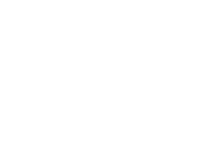 Externer-Datenschutzbeauftragter-DSGVO-weiss-2