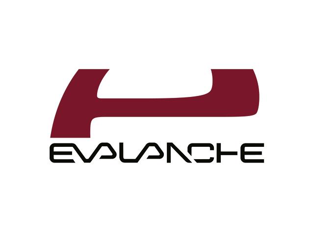 Logo von Evalanche der SC-Networks GmbH - Referenzkunde der activeMind AG für Datenschutz und Datensciherheit